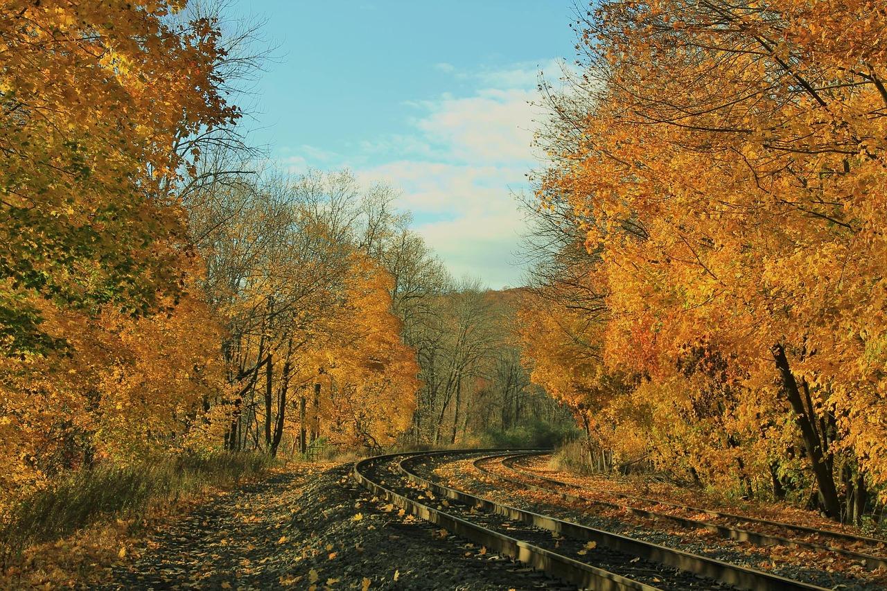 Herbst Marburg